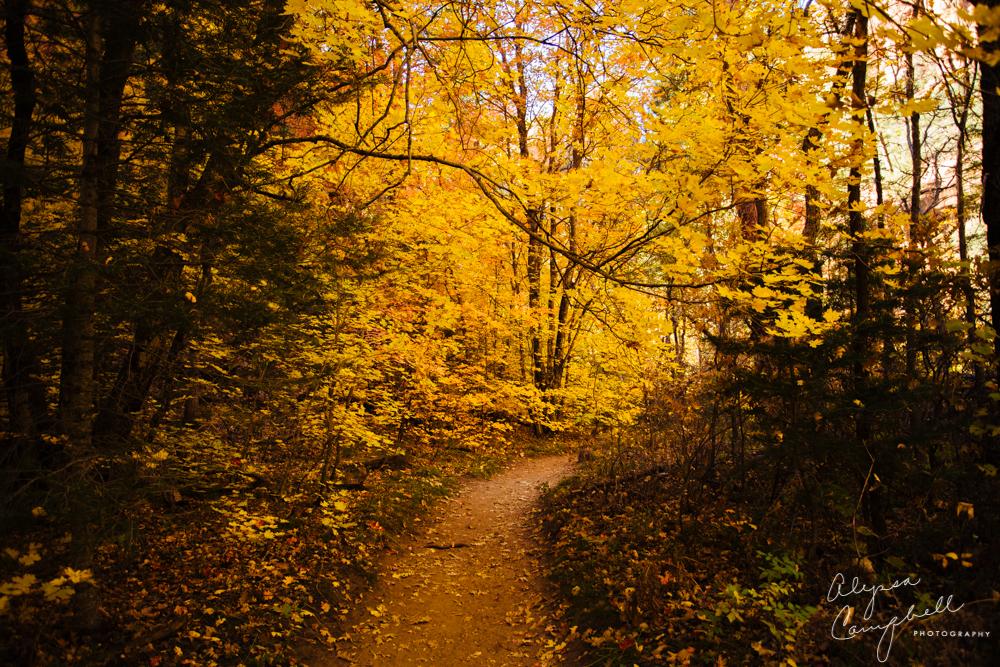 Sedona West Fork Trail hiking in fall