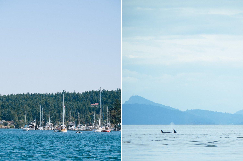 Friday Harbor boats