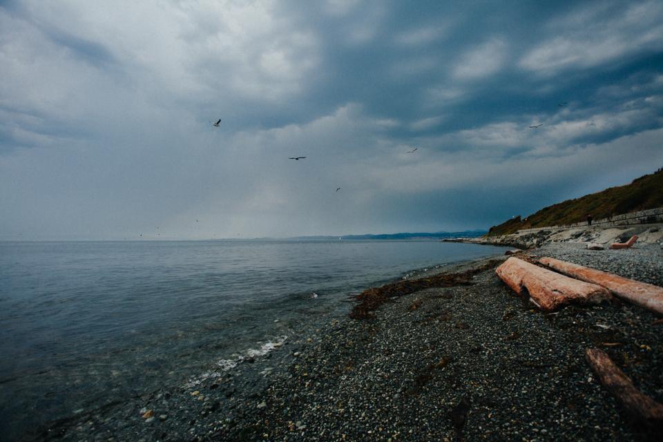 victoria coastline and beach