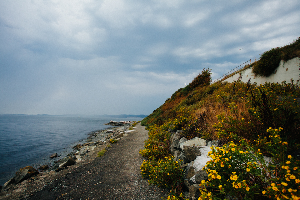Victoria Canada rocky beach with yellow flowers