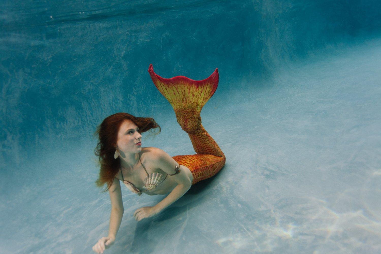 Mermaid Melissa A Real-Life Mermaid Professional A real photo of a mermaid