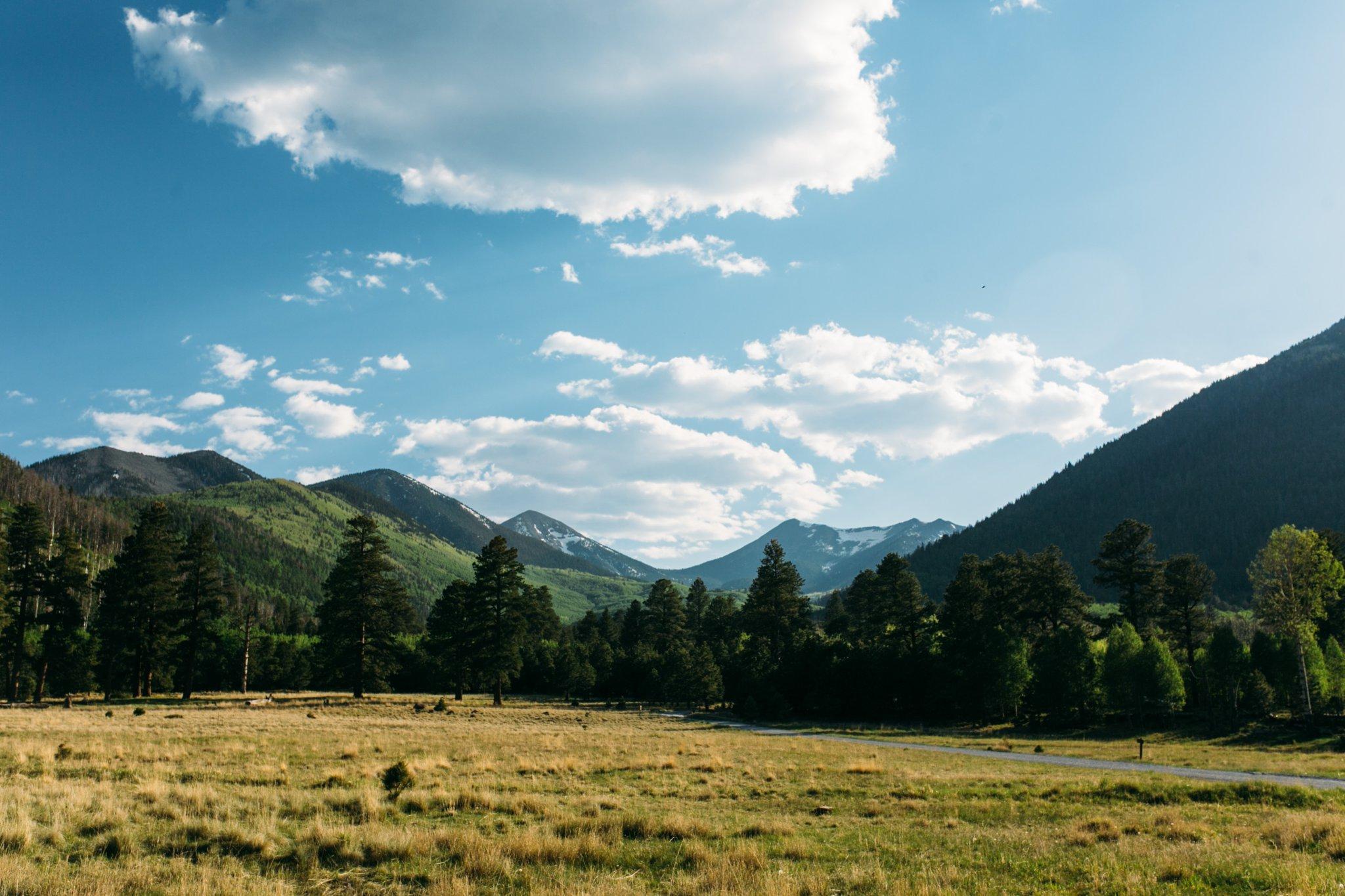 Lockett Meadow Flagstaff AZ in summer
