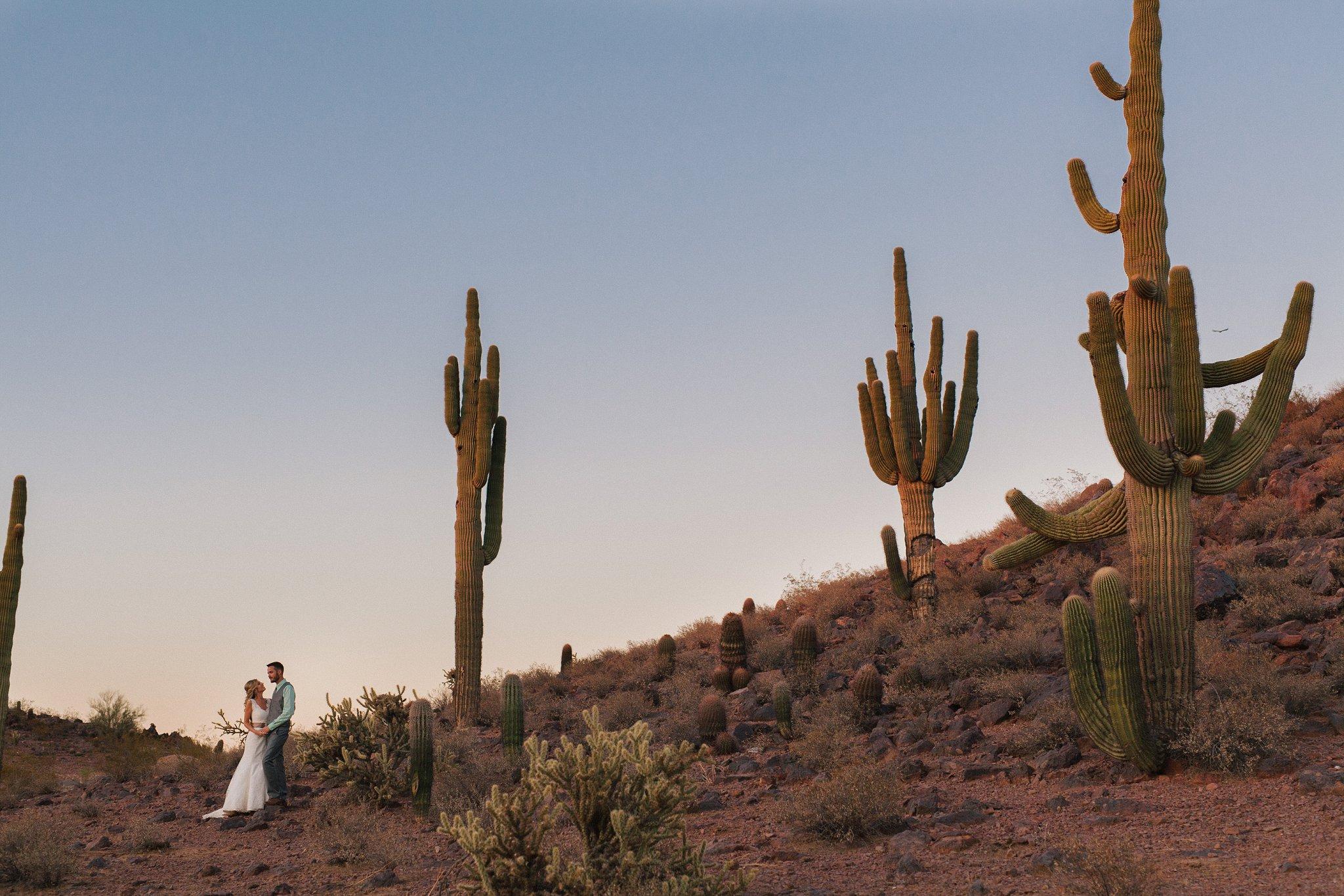 Arizona bride & groom in saguaro desert at sunset