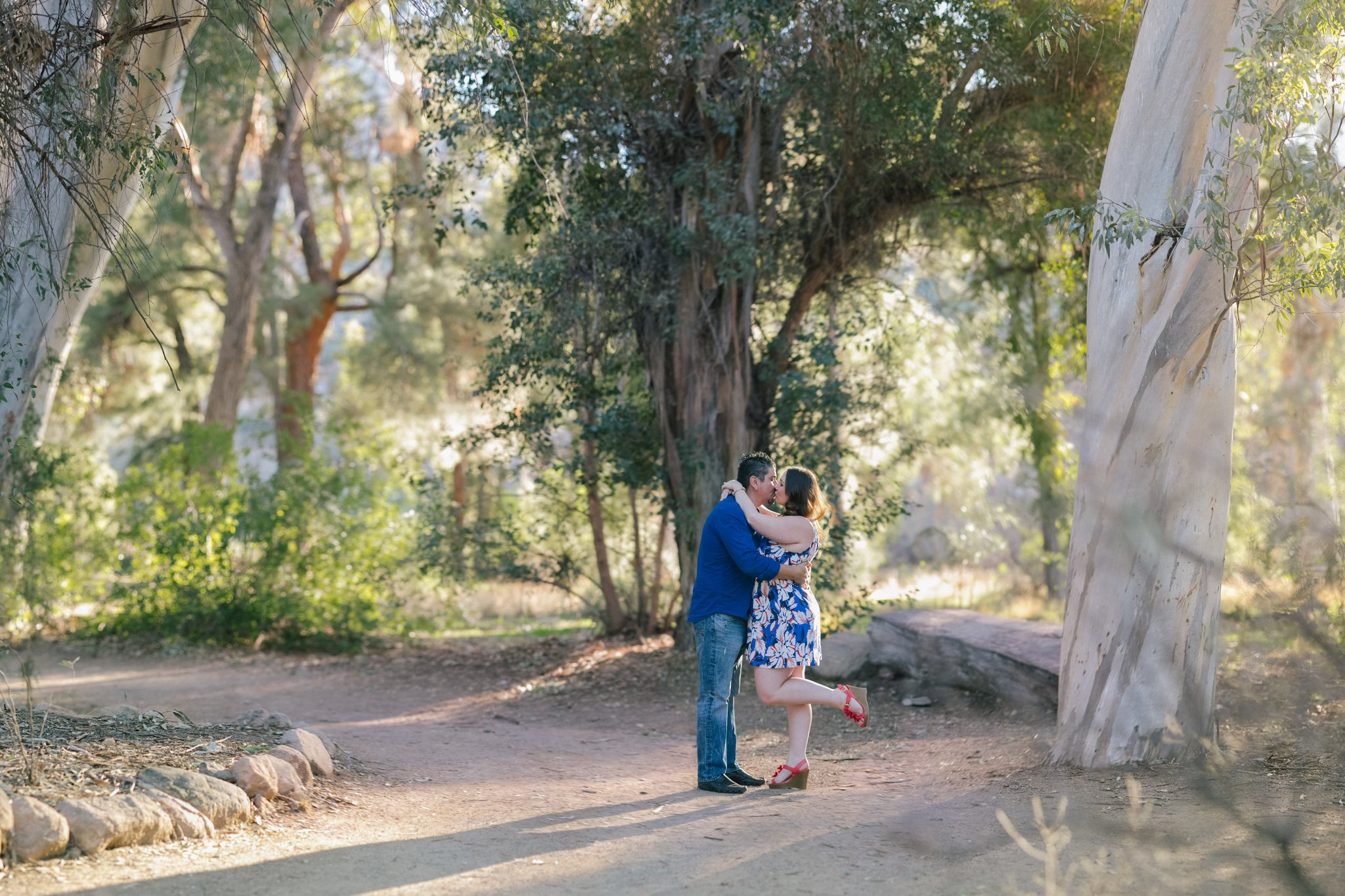 engagement photos in eucalyptus forest in Boyce Thompson Arboretum Arizona