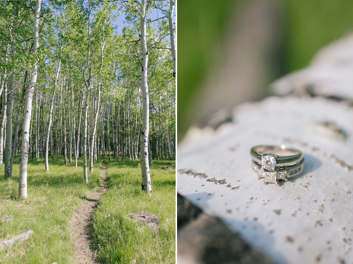 Lockett Meadow aspen grove gay engagement session
