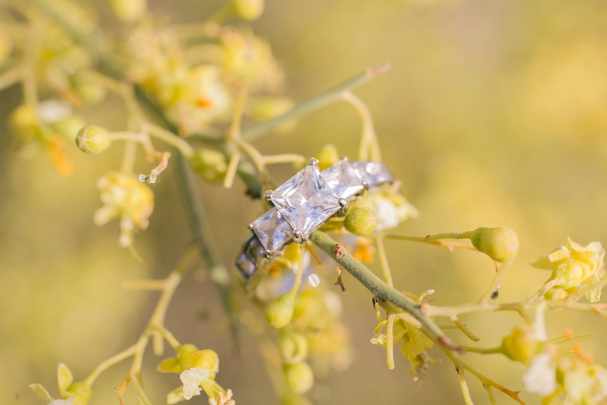 engagement ring on yellow flowering palo verde tree