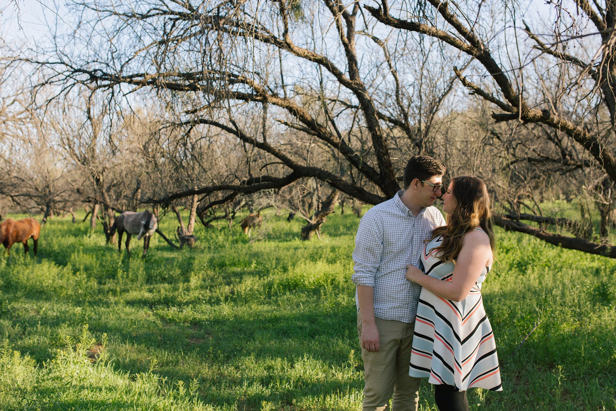 salt river engagement session with wild horses