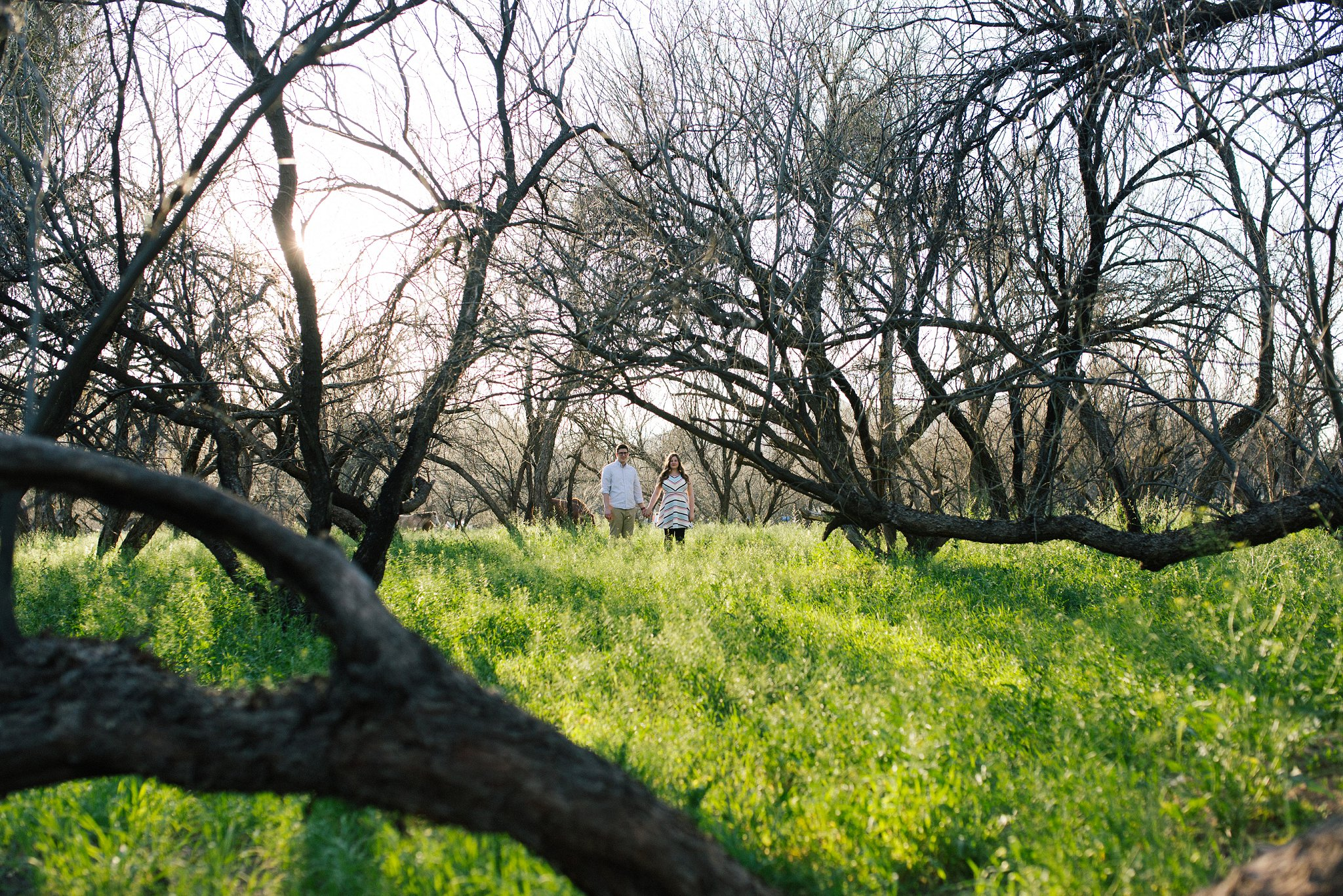 scenic outdoor green field engagement photos in Mesa