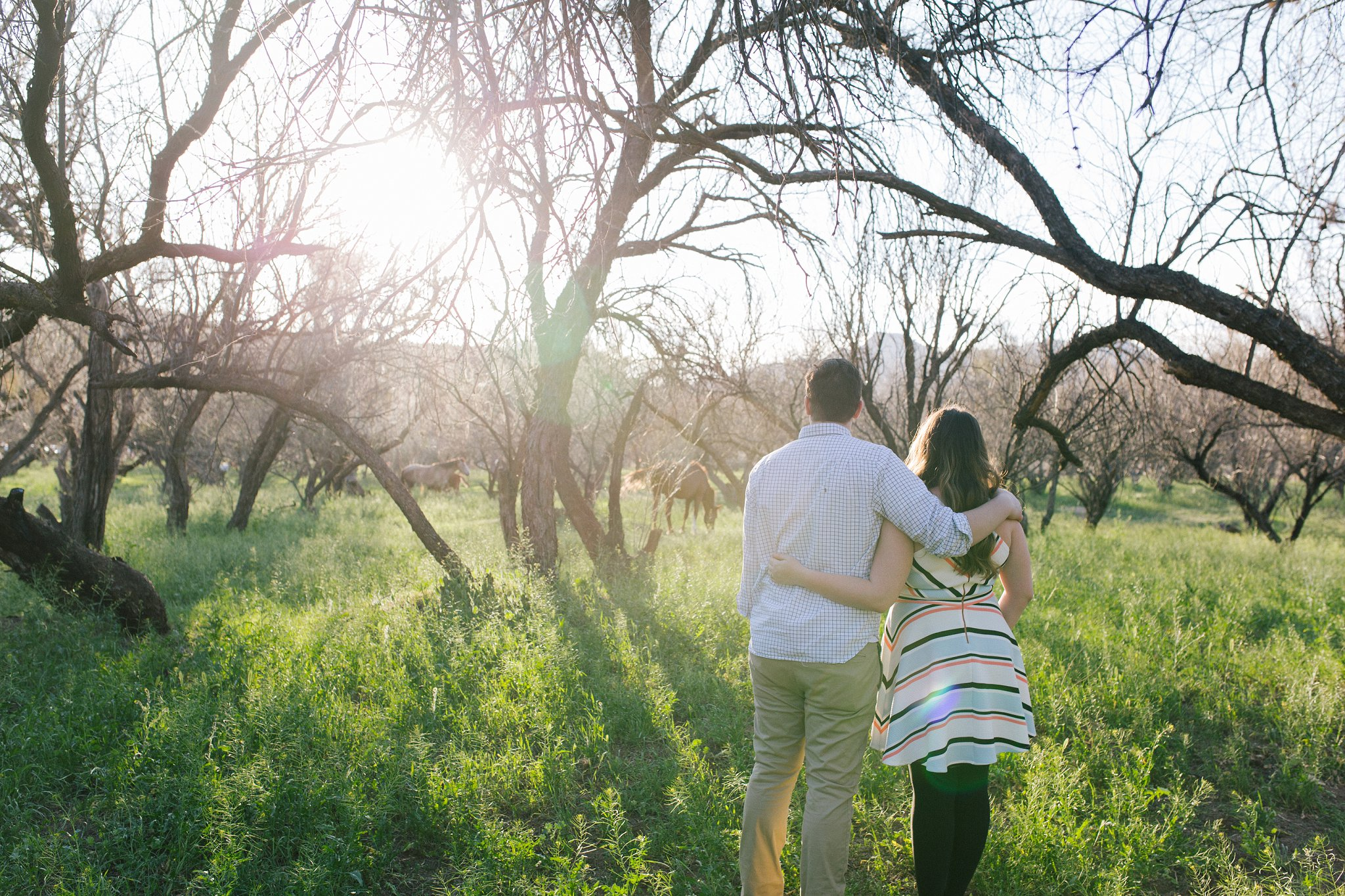 engagement session with wild horses of salt river in Mesa