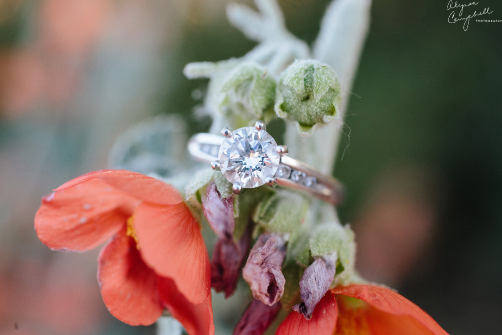 diamond engagement ring round cut on desert flower