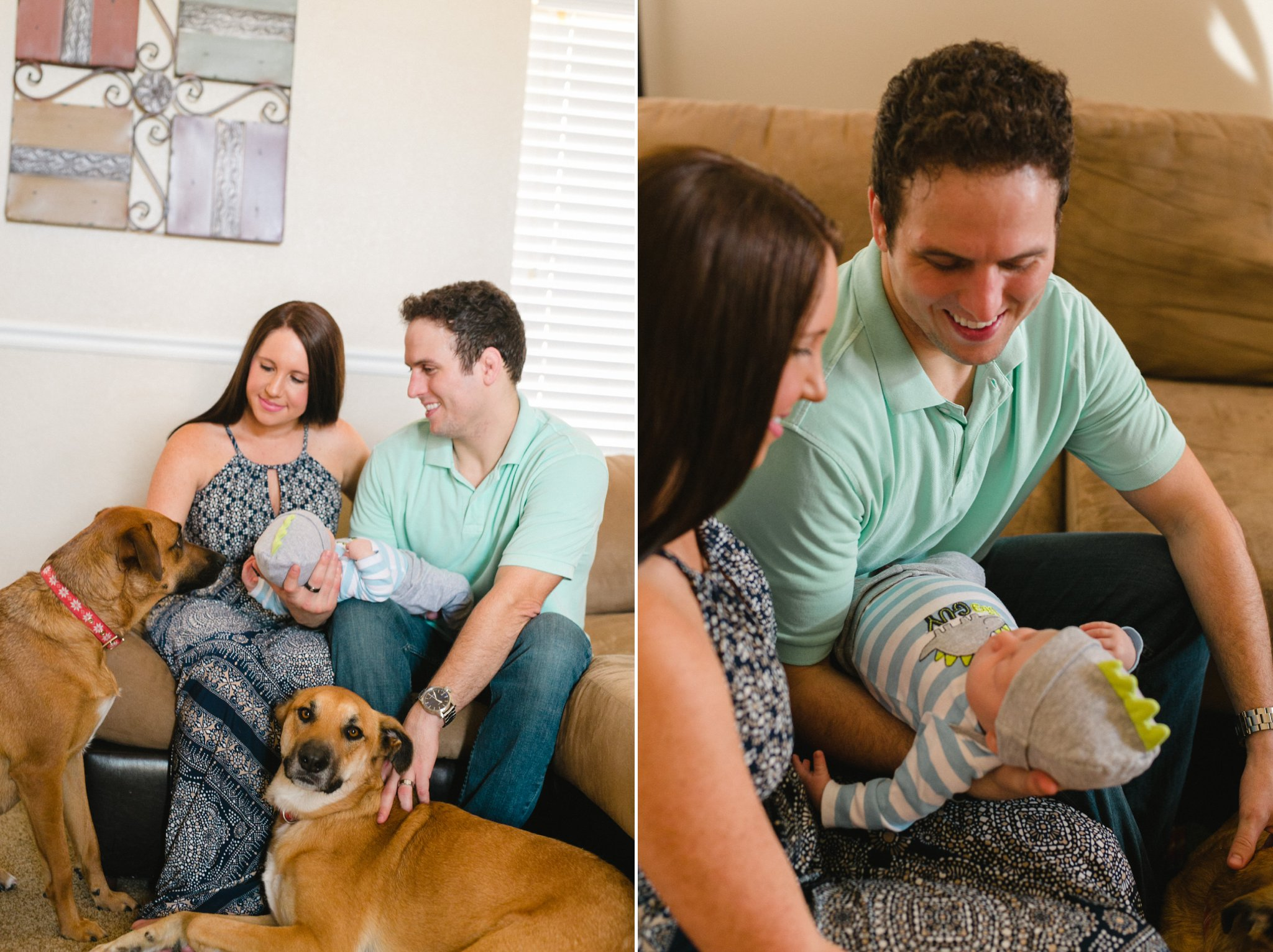 in home documentary lifestyle newborn photos with dogs