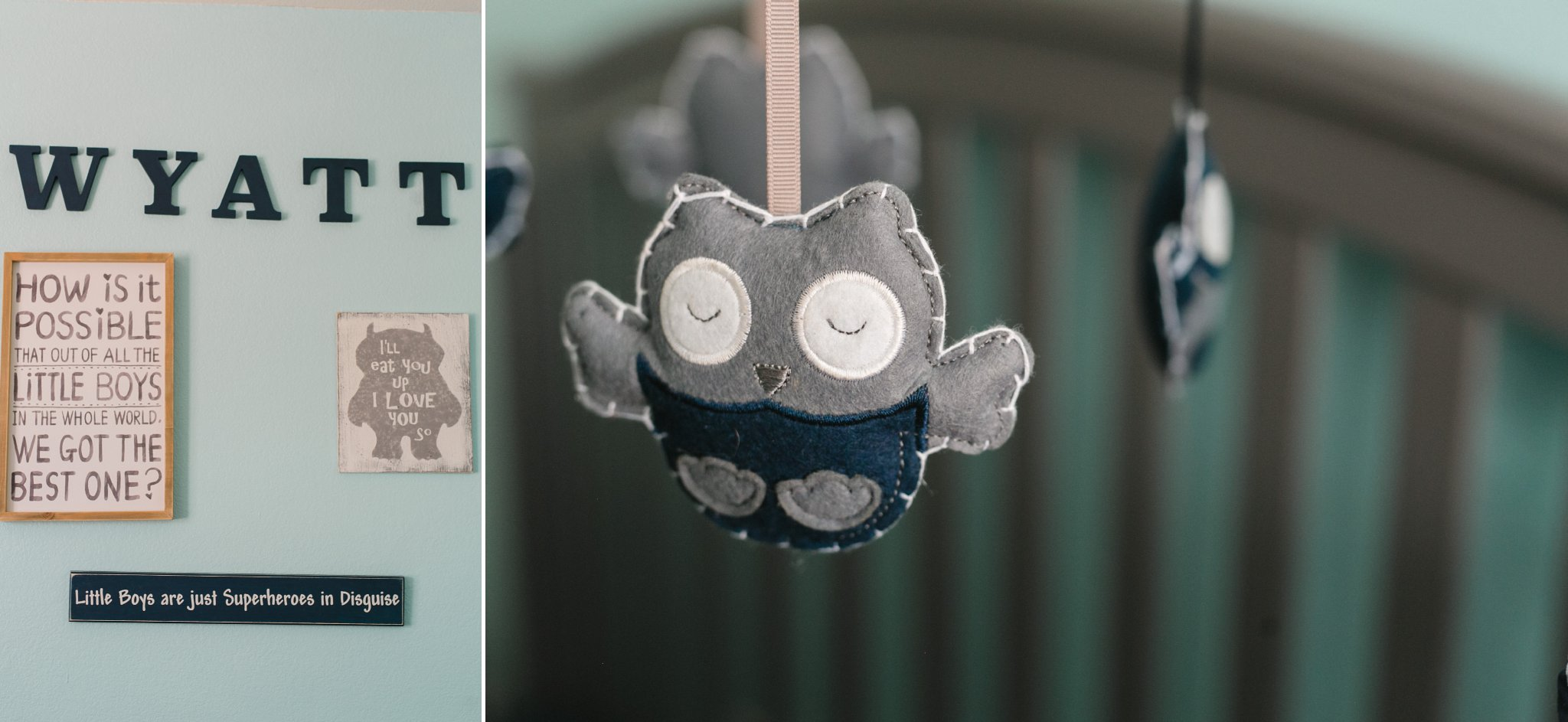boy nursery owls