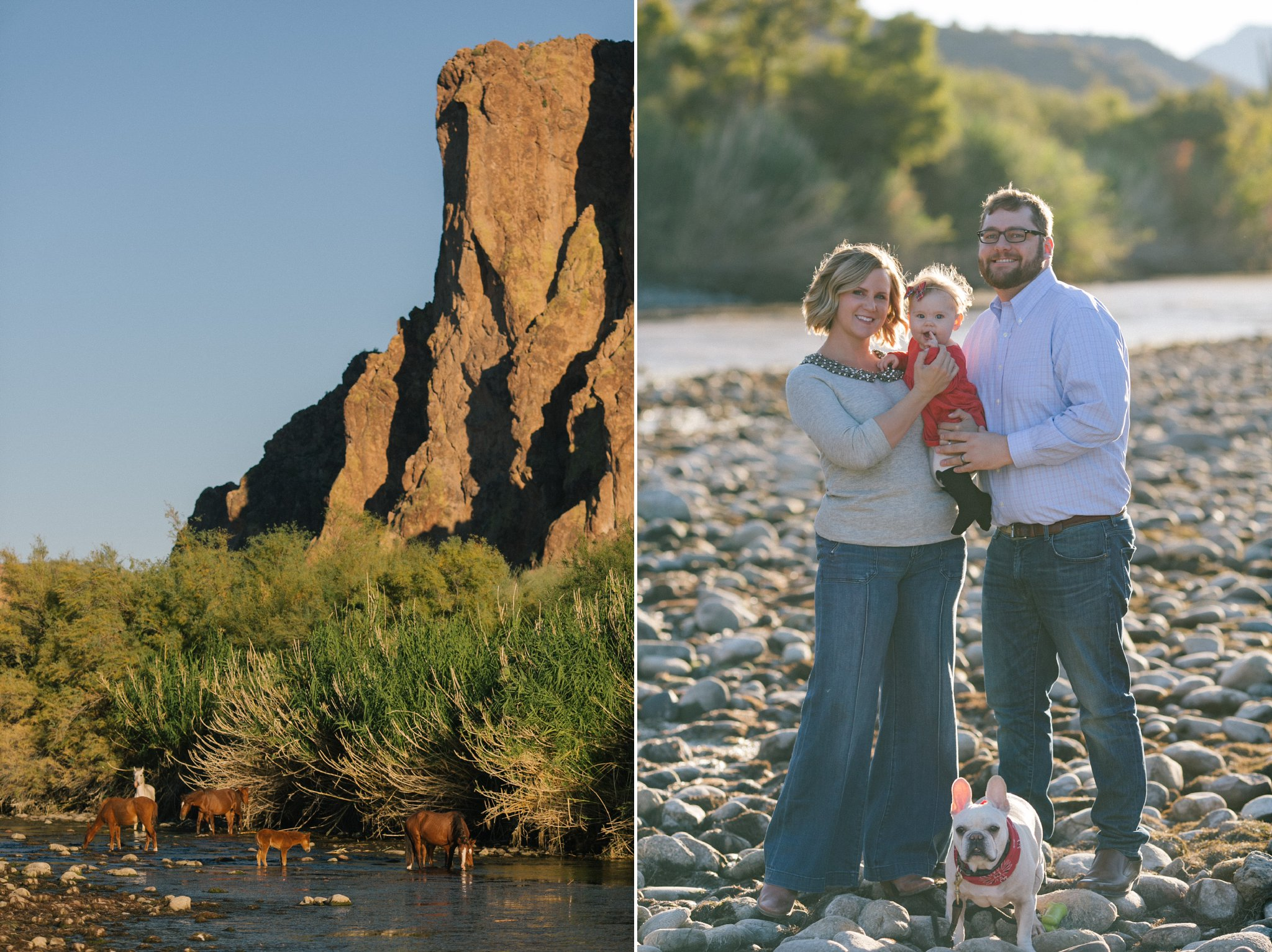 Mesa AZ family portraits along the Salt River with horses