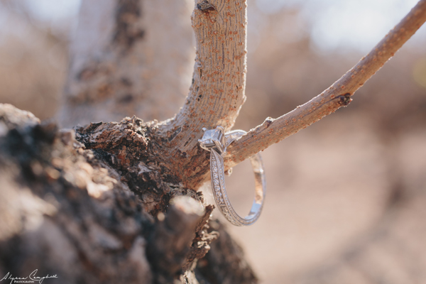 vintage style engagement ring on a tree branch in winter