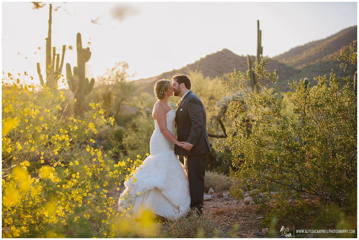 bride & groom in beautiful Arizona desert