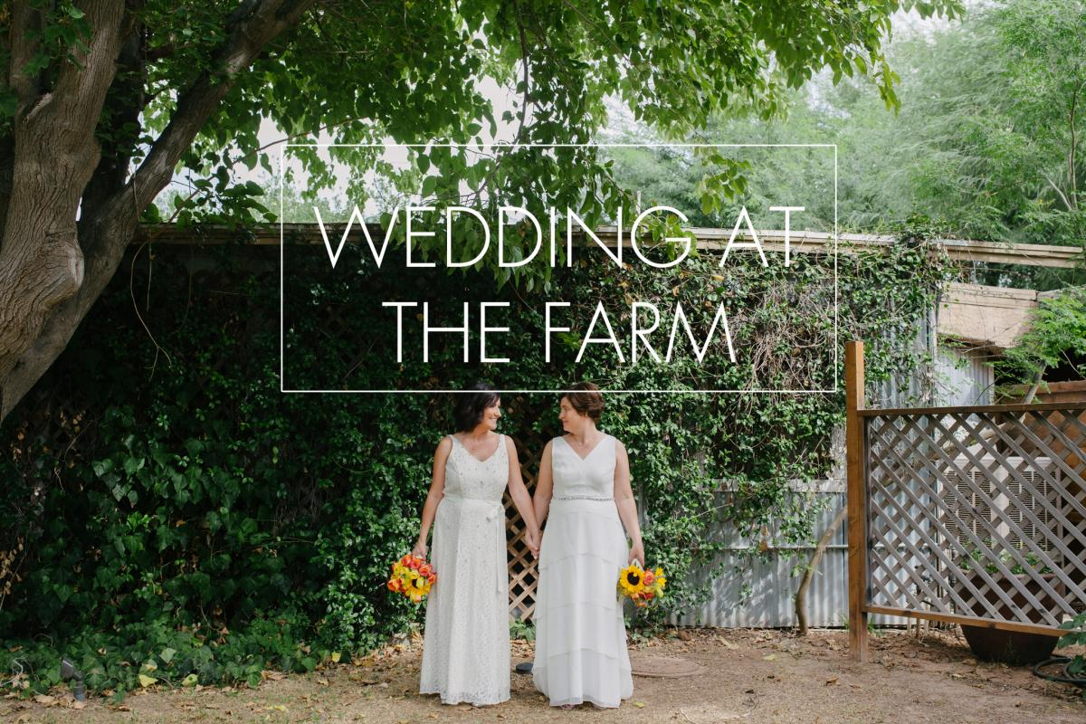 Same Wedding At The Farm Phoenix Az By Alyssa Campbell Photography