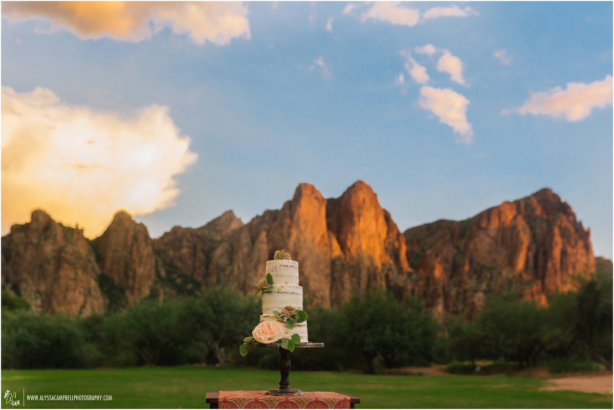 wedding almost naked cake with real flowers against stunning desert mountains lit by sunset