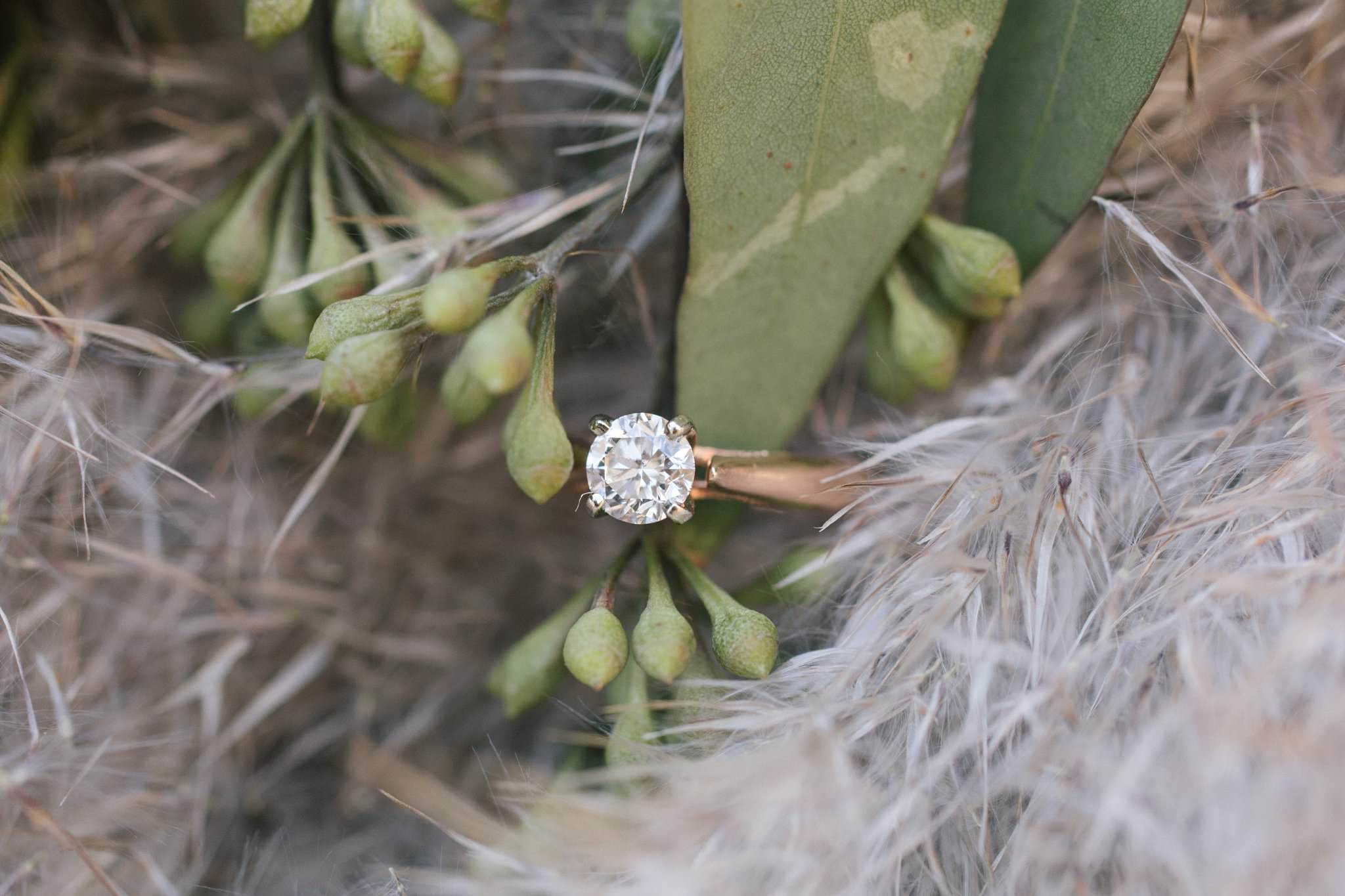 wedding ring by Shane Co