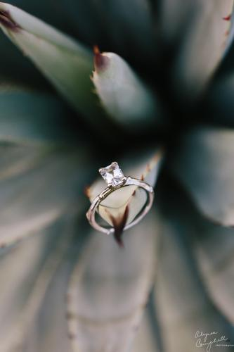 eco friendly handmade sapphire twig engagement ring on agave plant
