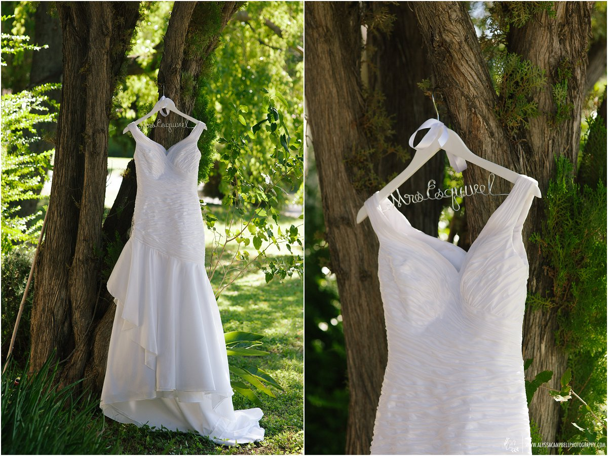 sleeved wedding dress hanging on tree at a Phoenix home
