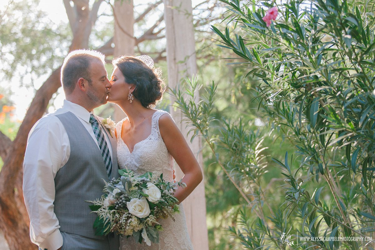 bride & groom portraits classic elegant rustic wedding Windmill Winery