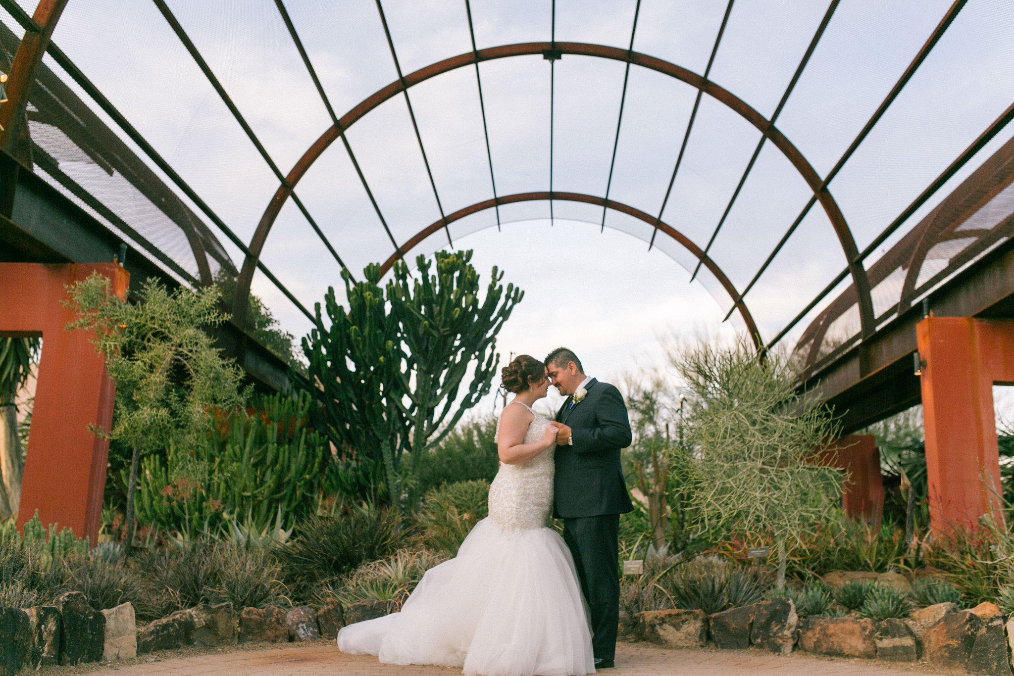 bride & groom at Desert Botanical Gardens