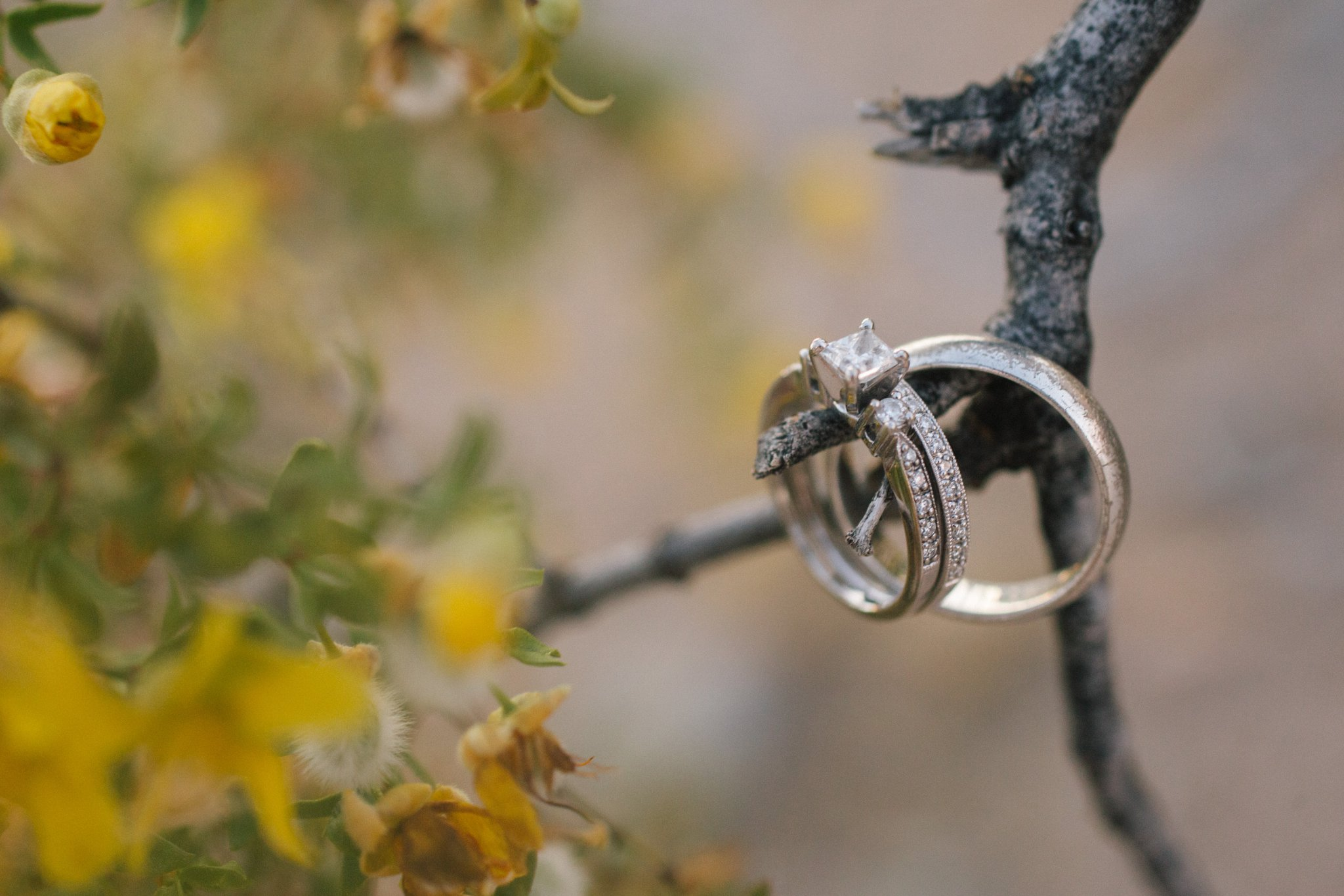 phoenix elopement in the mountains