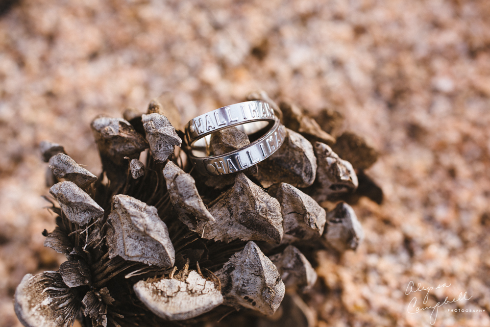dogtag wedding rings on pincone