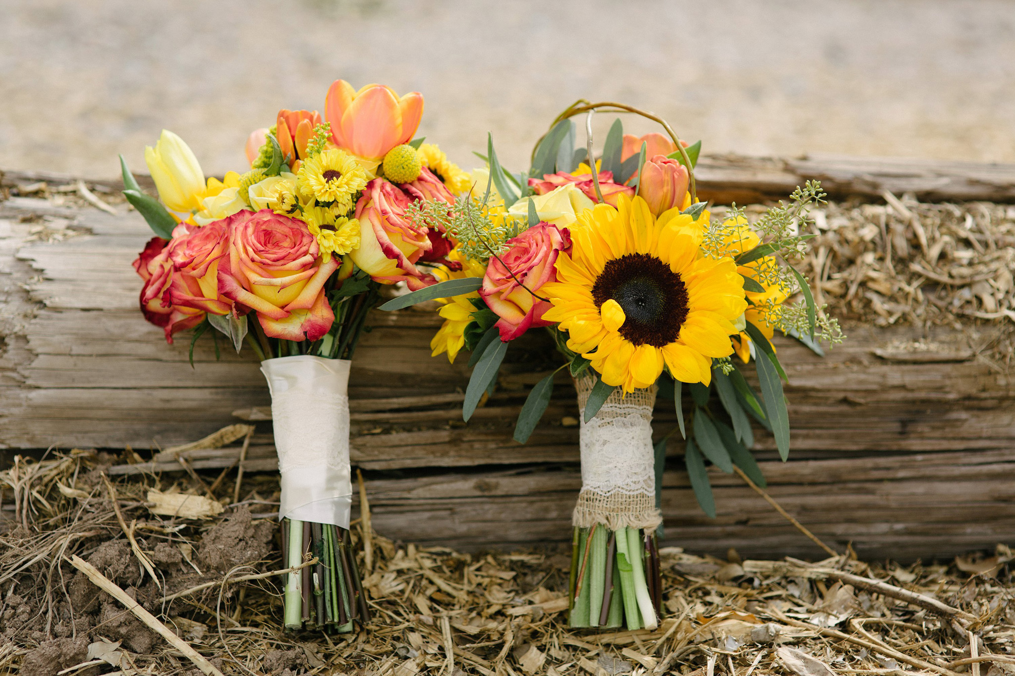 two brides' bouquets bright colors and sunflowers Arizona wedding photographer