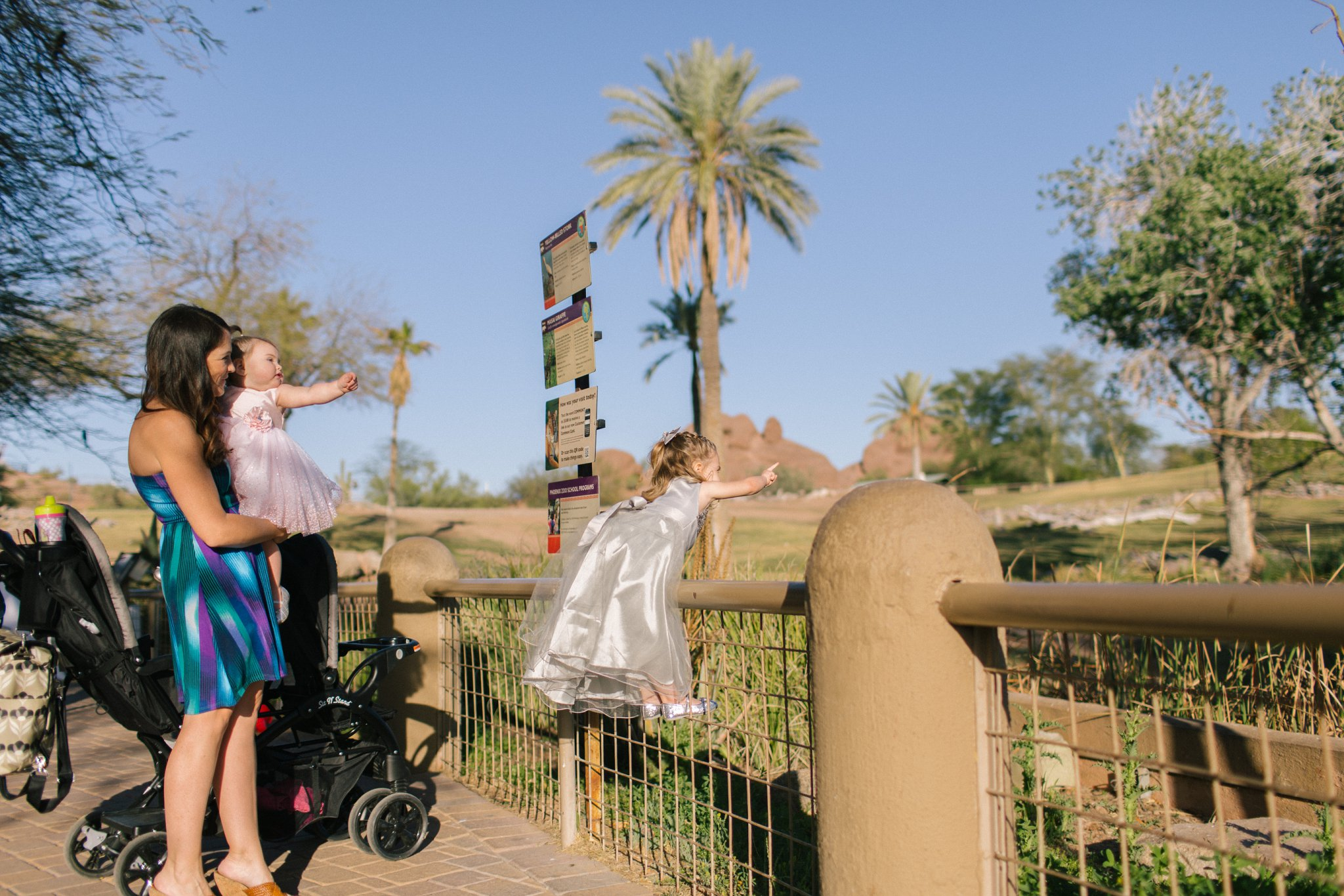 wedding at the Phoenix Zoo
