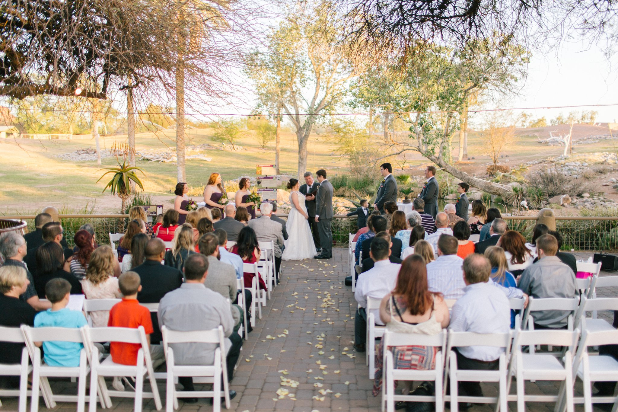 Outdoor natural wedding venues in phoenix arizona tips for phoenix zoo wedding ceremony junglespirit Gallery