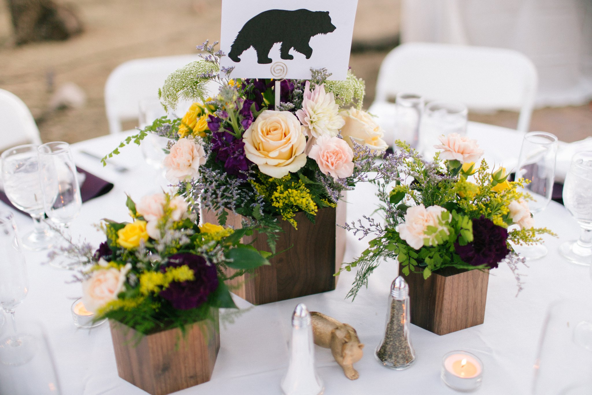 sam josh 39 s phoenix zoo wedding alyssa campbell photography. Black Bedroom Furniture Sets. Home Design Ideas