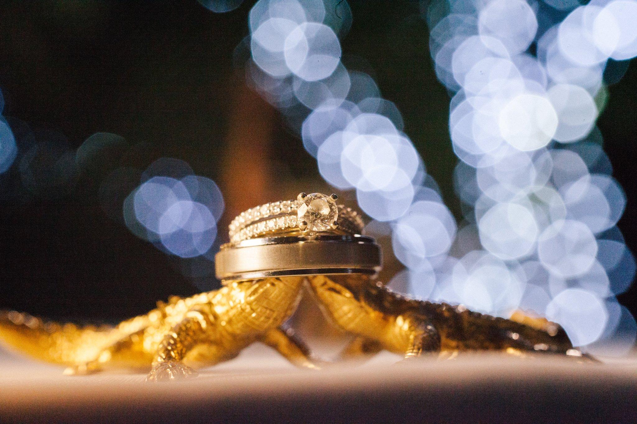 wedding rings at Phoenix Zoo wedding
