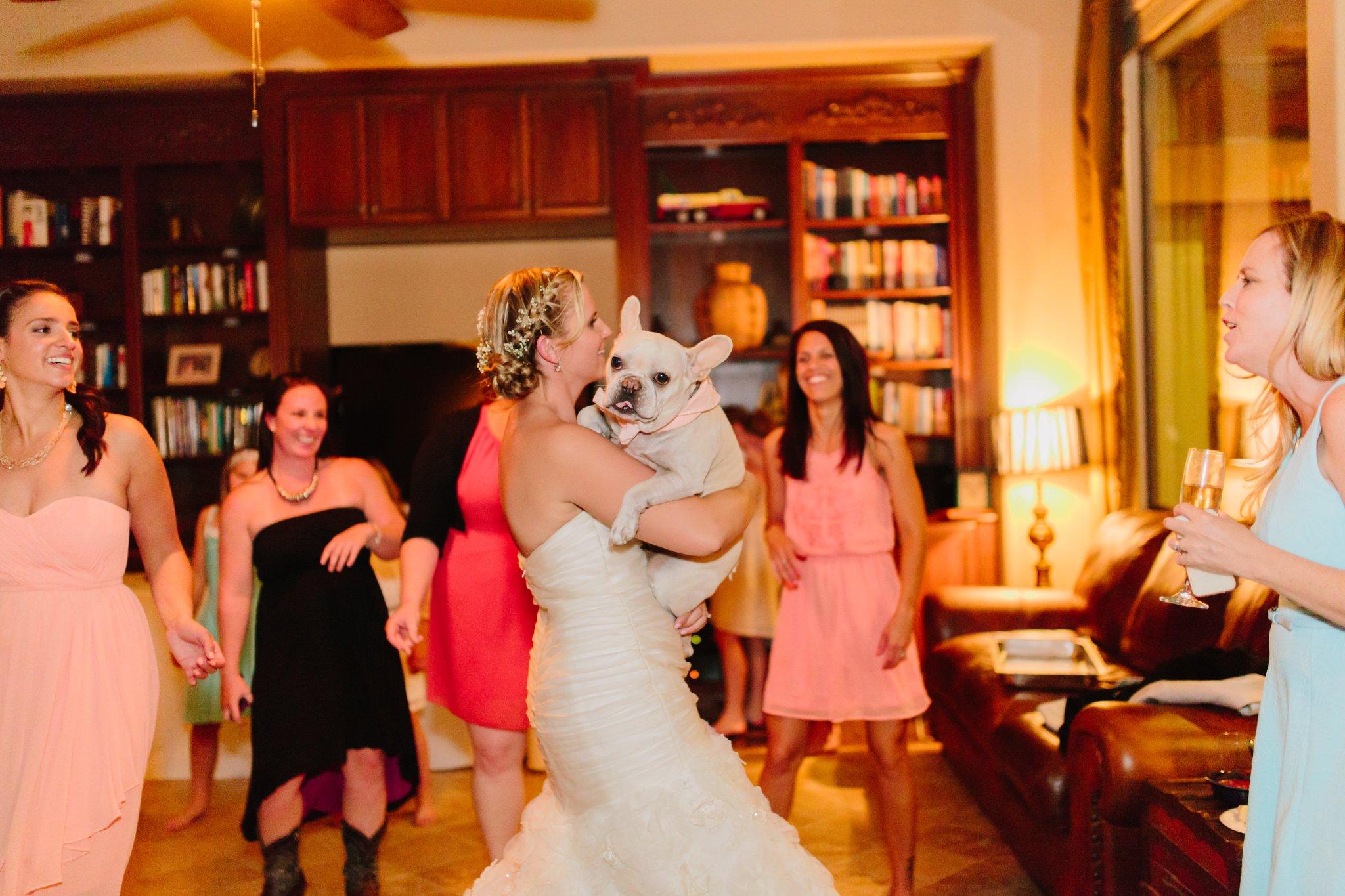 bride dancing with bulldog at wedding in Mesa AZ