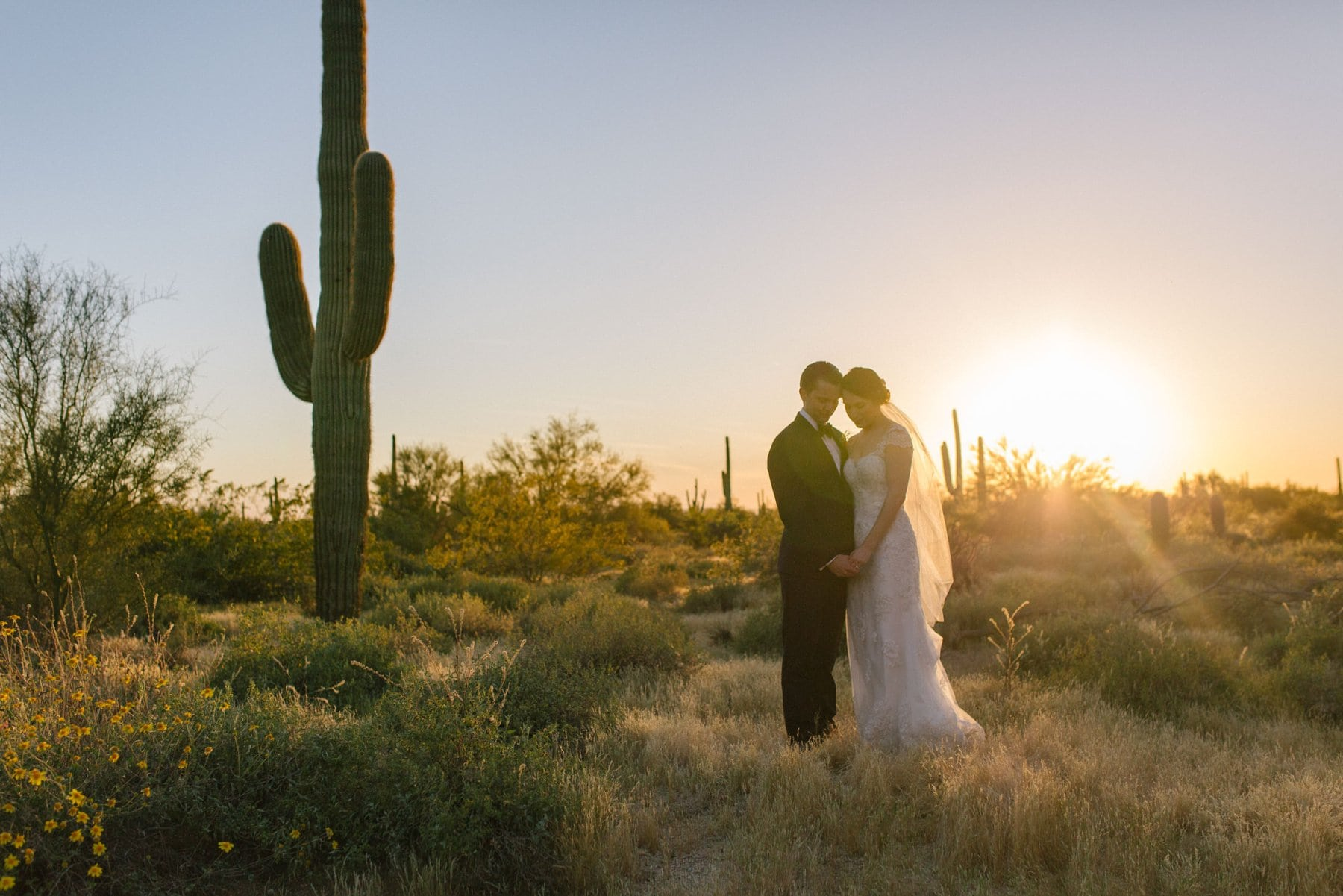 bride & groom in Arizona desert at sunset