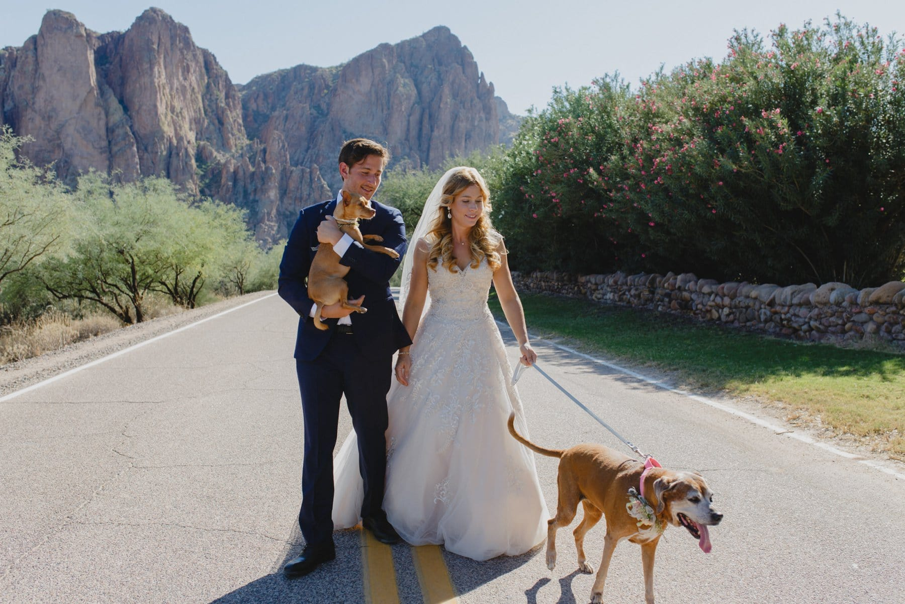 Saguaro Lake Guest Ranch wedding photos with dogs