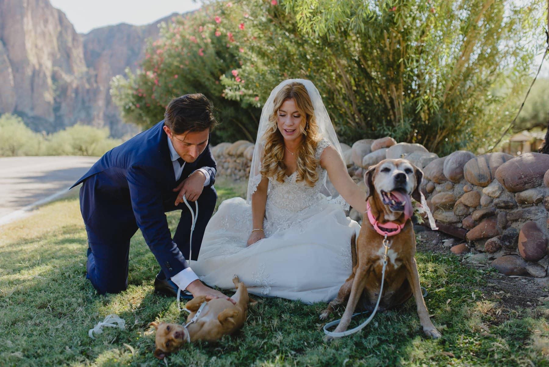 Saguaro Lake Guest Ranch wedding photos Arizona dog friendly venue