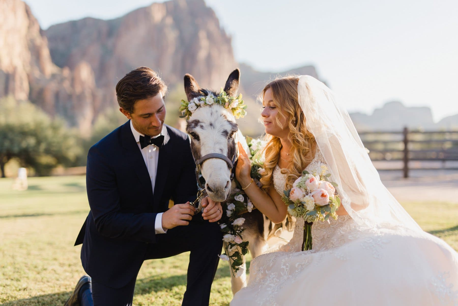 bride & groom with beer burro at Saguaro Lake Ranch