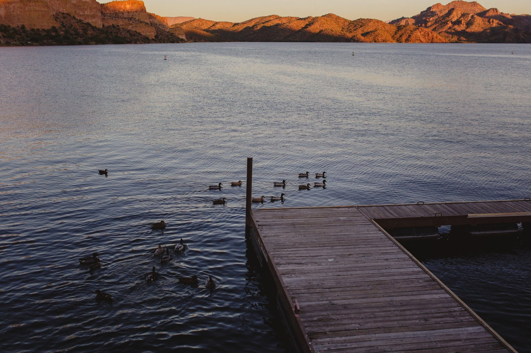 Saguaro Lake docks at sunset