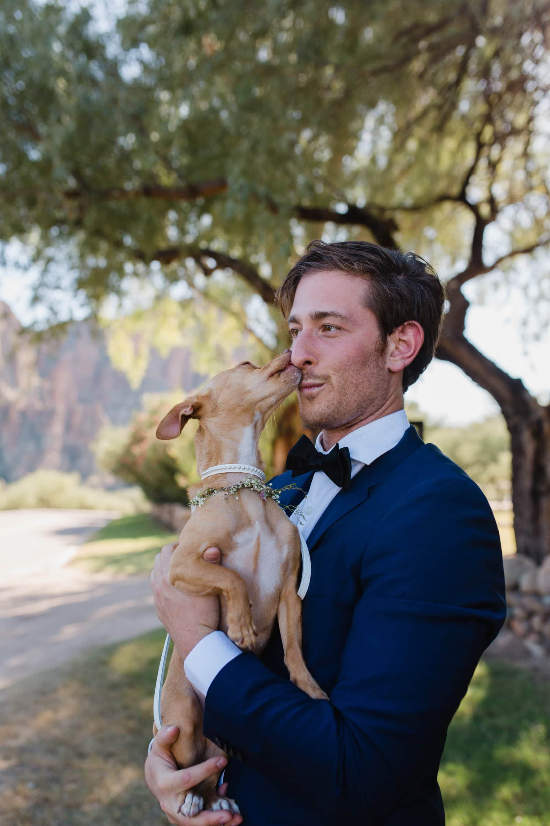 dog kissing groom Saguaro Lake Ranch wedding