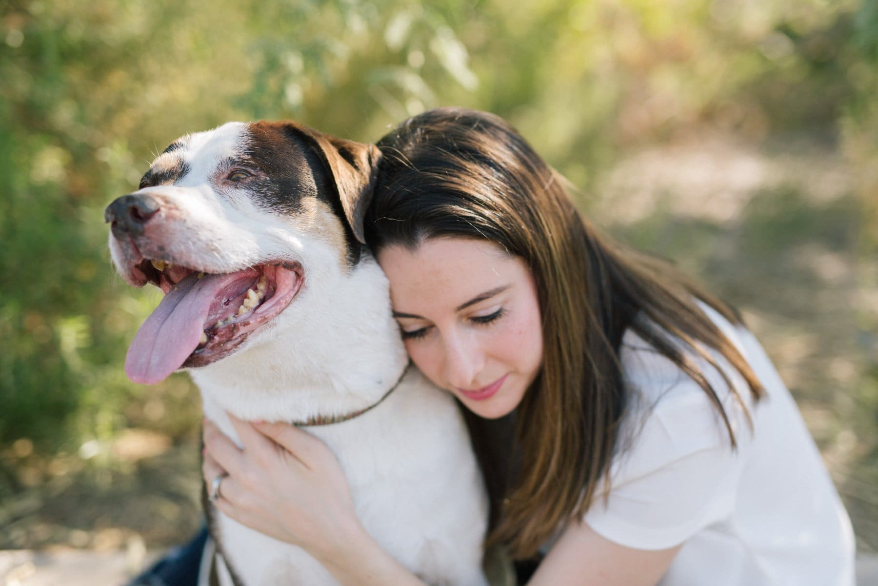 owner hugging dog forever sessions with dogs Mesa AZ