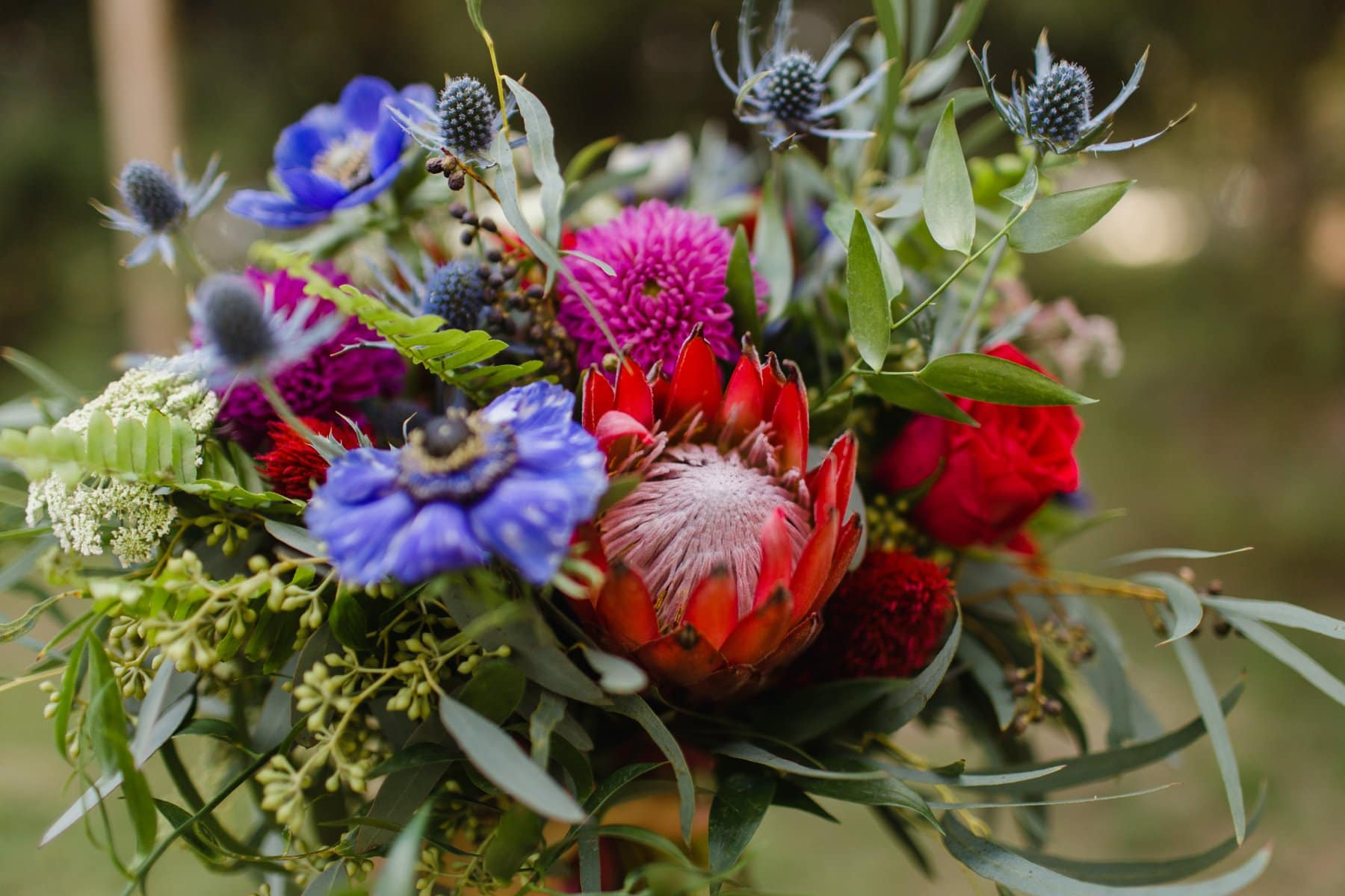 Hoot & Holler florals with red protea