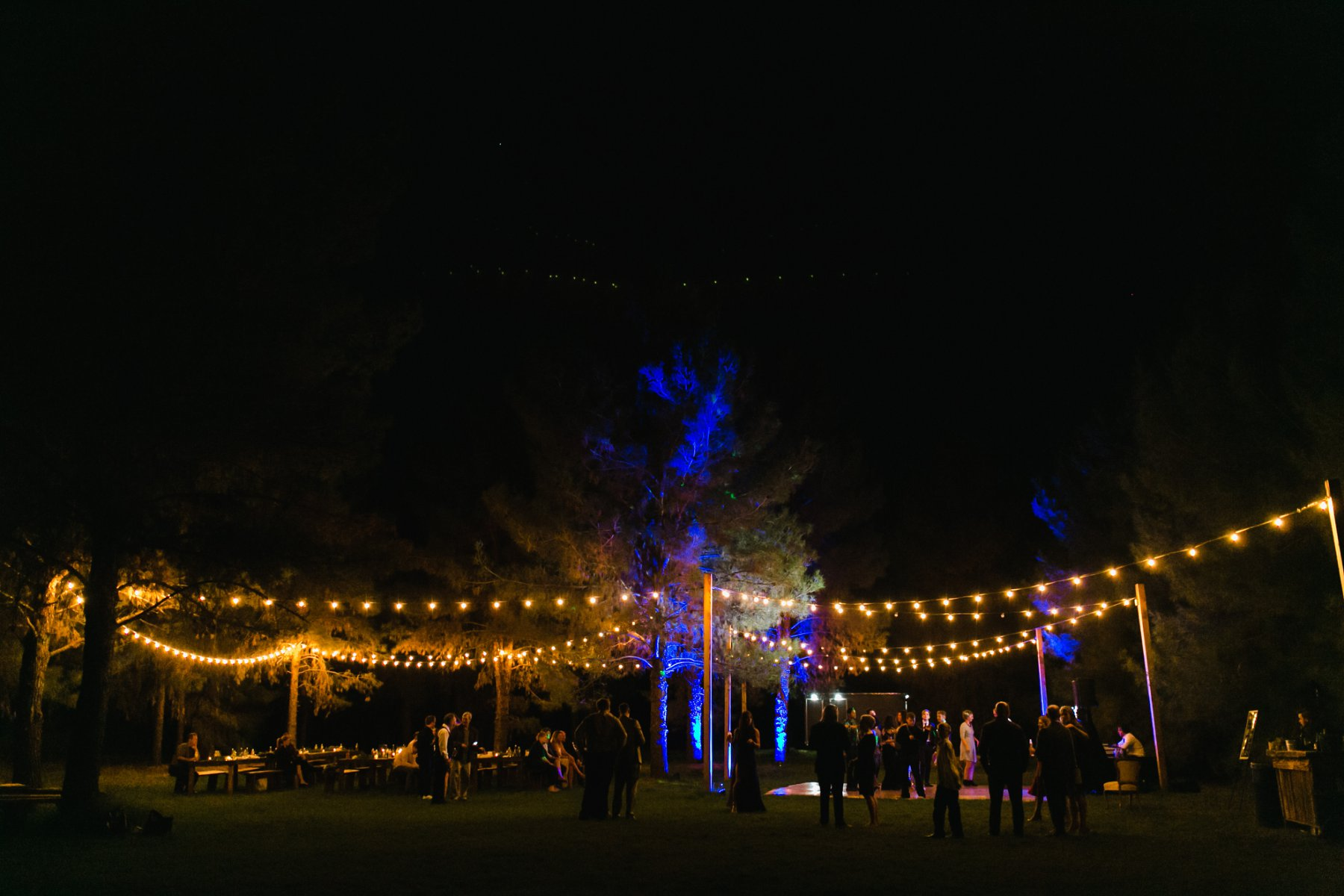 the Meadow Schnepf Farms Phoenix Arizona outdoor forest wedding venue reception
