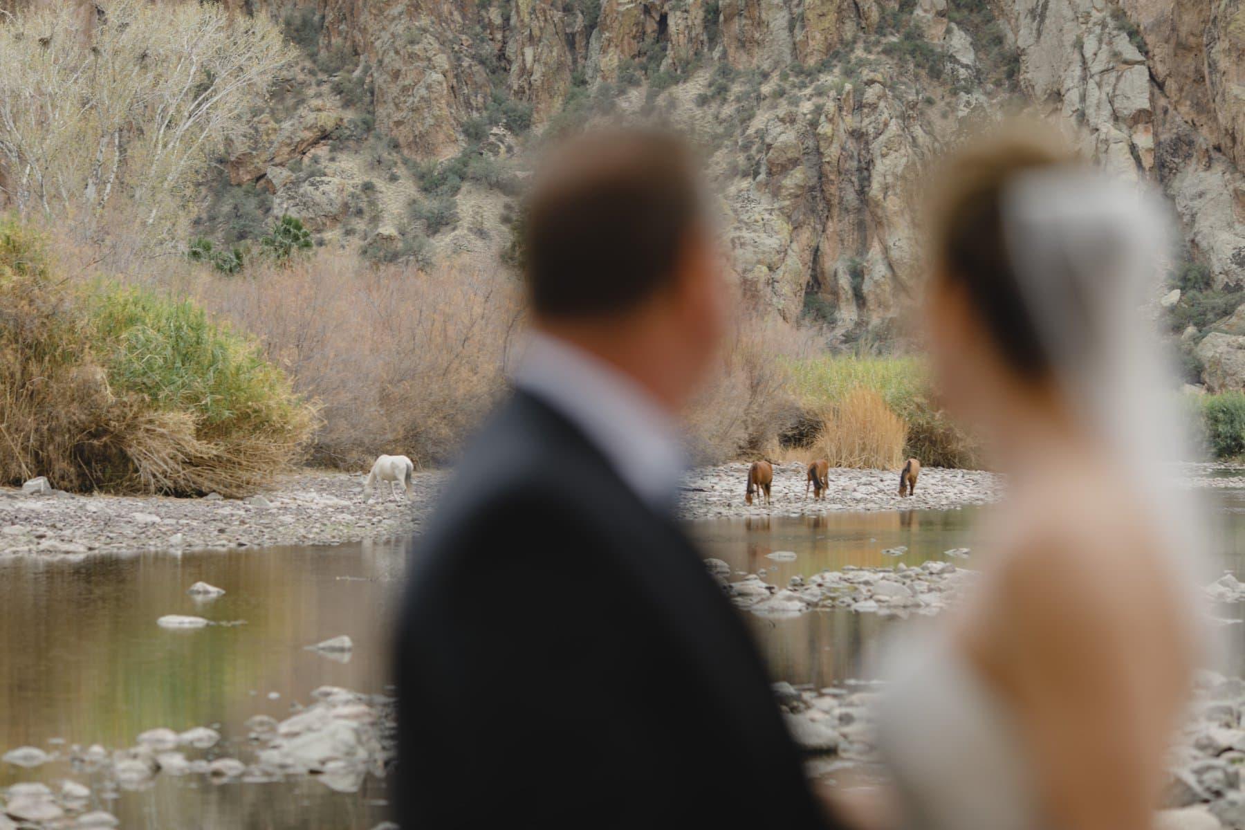 bride & groom and horses Saguaro Lake Ranch wedding