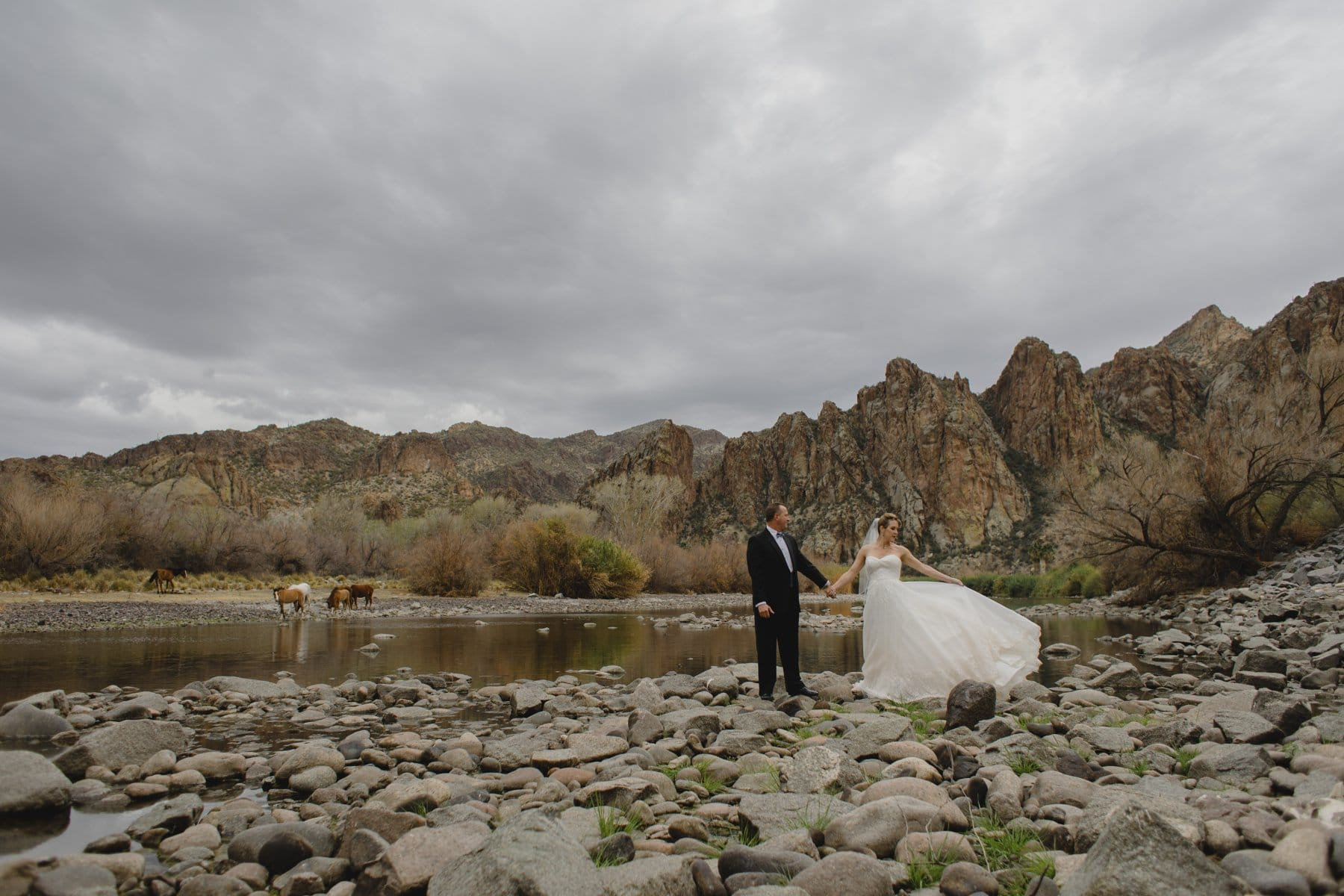 bride & groom with wild horses Saguaro Lake Ranch Arizona