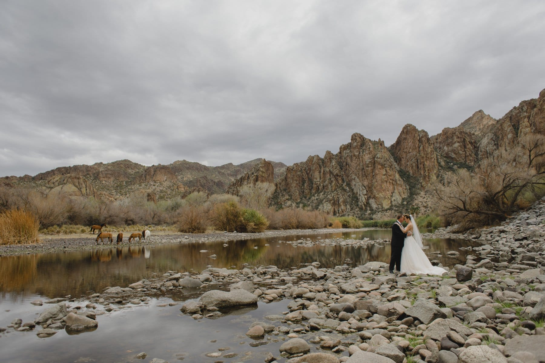 bride and groom with wild horses at Saguaro Lake Ranch on cloudy day