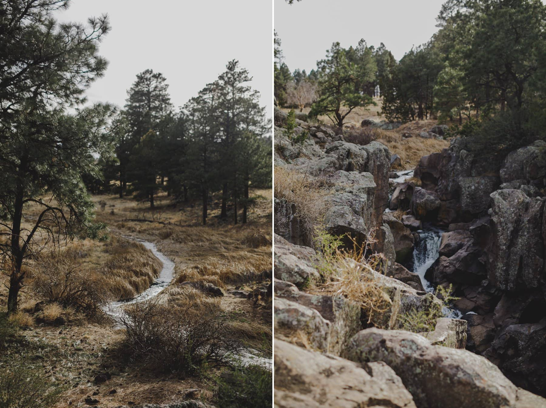 Flagstaff elopement location