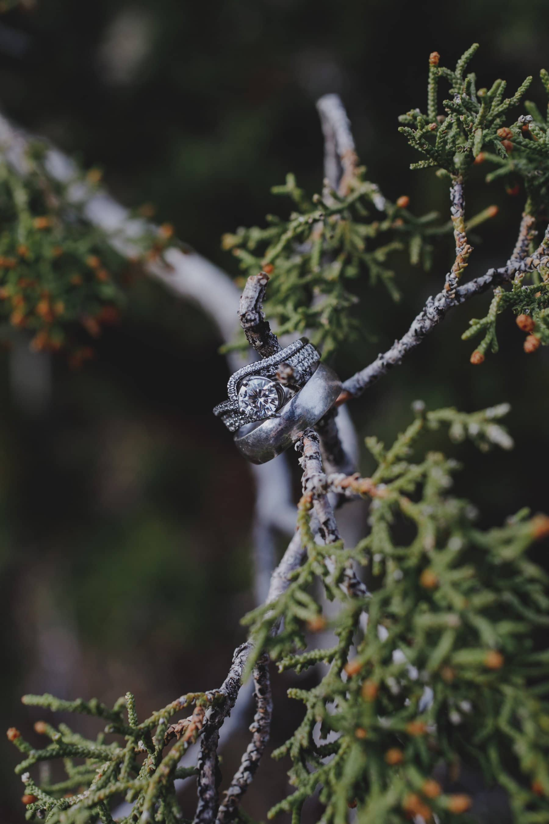 Flagstaff elopement ring photo