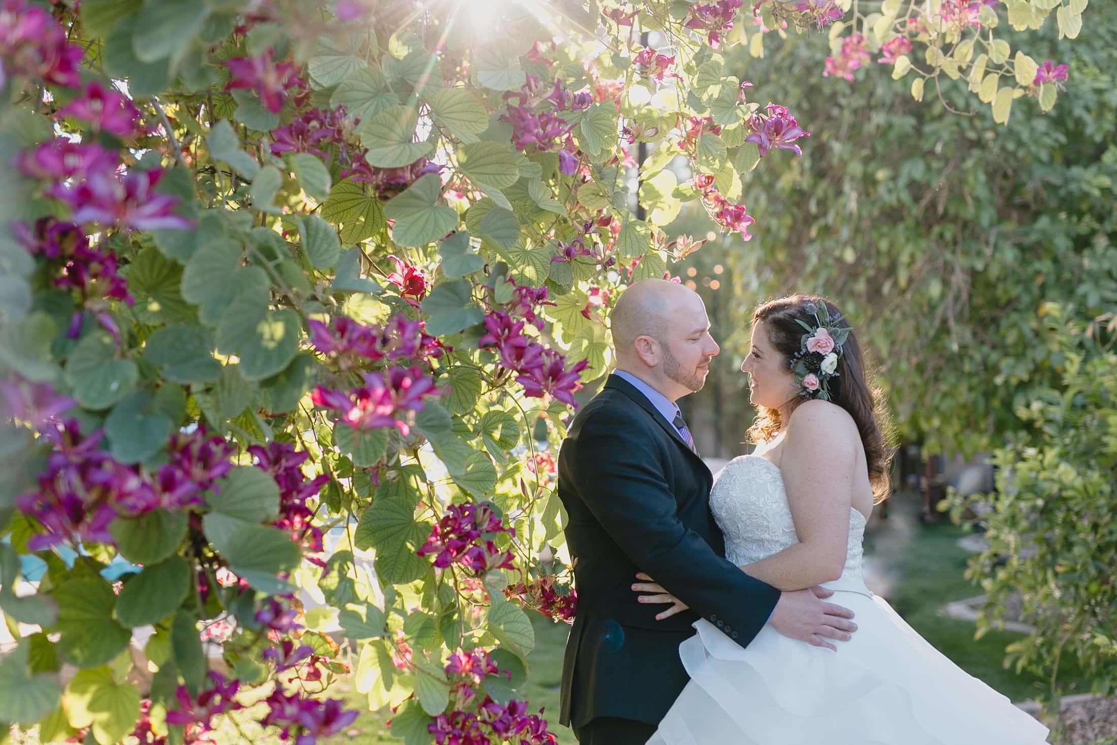 Tempe backyard wedding photos