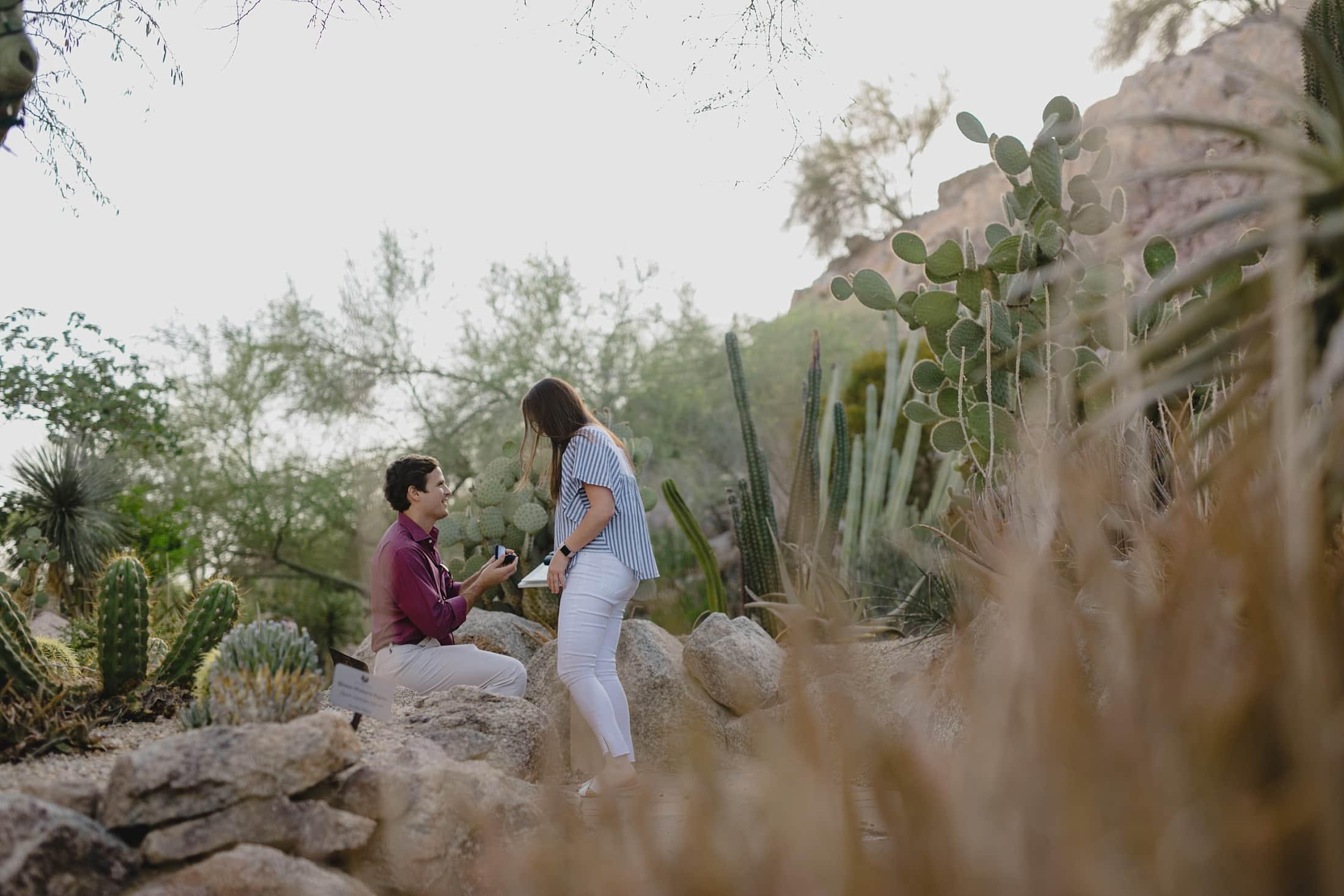 Arizona proposal photographer